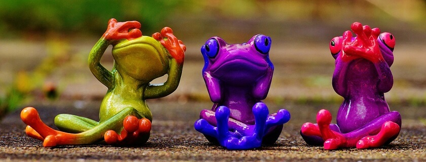 frogs-1420294_1280